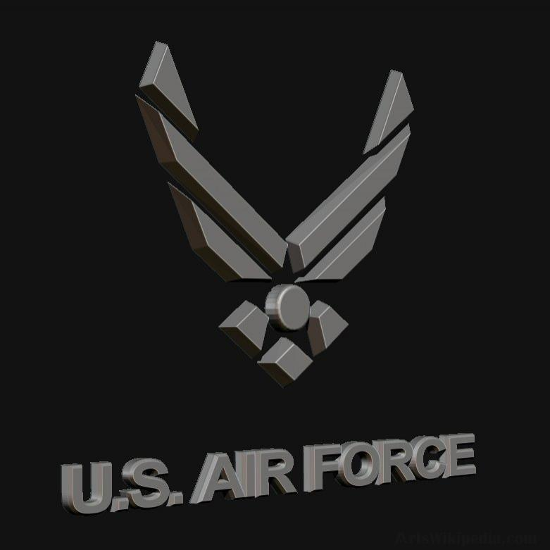 3D U.S. AIR FORCE Log