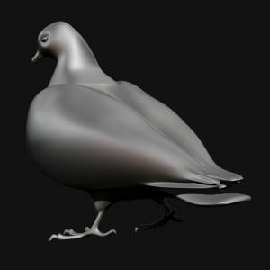 3D Pigeons