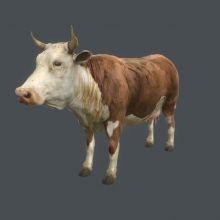 Virtual Reality 3d Cow