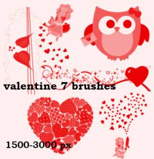 valentine love bird brushes