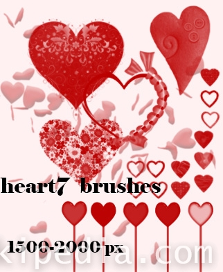 hearts and flower photoshop  brushes