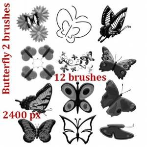 collection of butterflies brushes