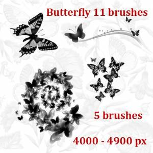download_butterfly__photoshop_brushes