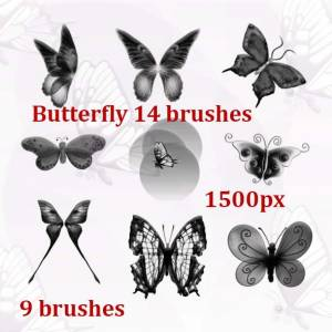 fantasy butterfly brushes