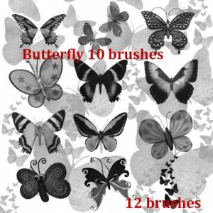 high_quality_of_butterfy_brushes