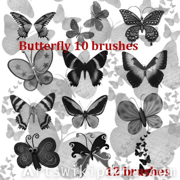 high quality of butterfy brushes