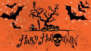 happy halloween skull wallpaper