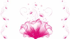 pink lotus flower image
