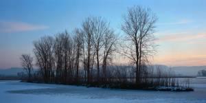 free-snow-winter-image-5908de3cc394d