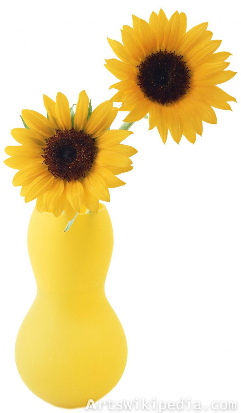 sunflowers in yellow vase