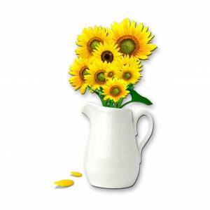sunflowers-clipart-58f6e5e88f0cc