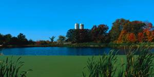 autumn-blue-lake-5908e765ed9f8