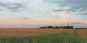 panoramic image for farmer field