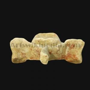 c3-vertebrae-posterior