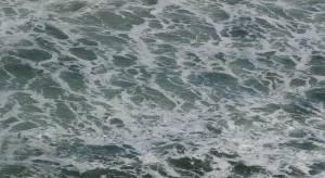 realflow wave texture