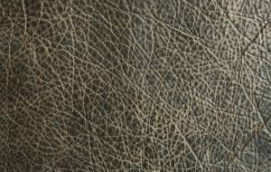 genuine-leather-texture