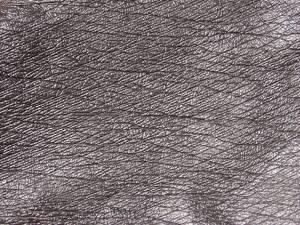 Leathery texture