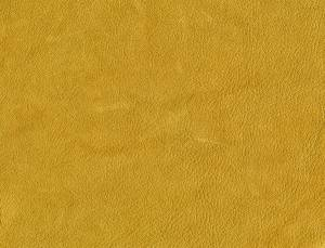 yellow leathery texture