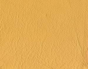 beige animal Leather texture