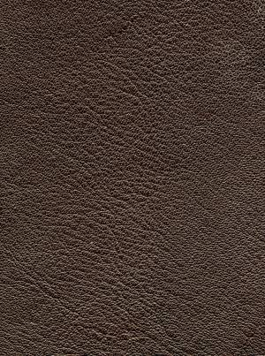 black animal leather texture