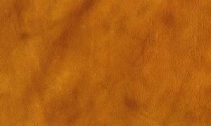 brawny-leathery-texture