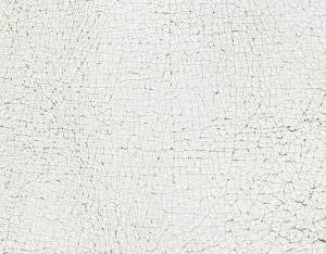 white-animal-leather-texture