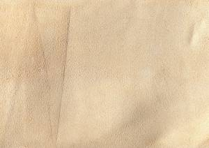 animal-beige-leather-texture