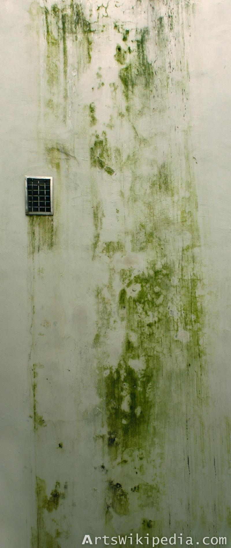 green dirty wall texture