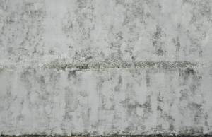 decayed-wall