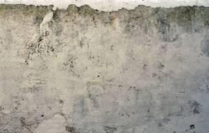 texture for old wall