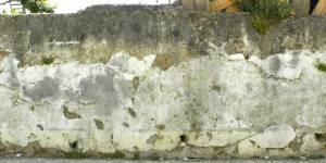 broken moss wall