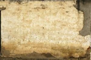 maya plaster texture
