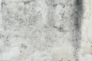 c4d white plaster texture