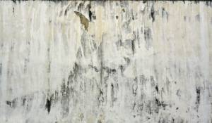 marmoset wall texture