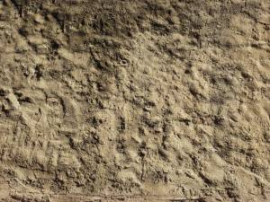 wall-texture-plaster