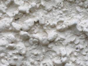 free-stucco-texture-close-up