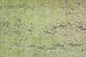 greenish-wall-stucco-texture