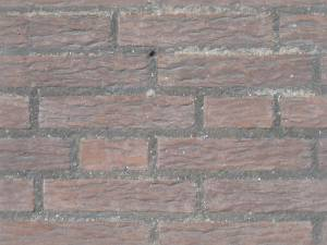 irregular sized brick texture