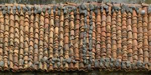 broken-old-roof-texture