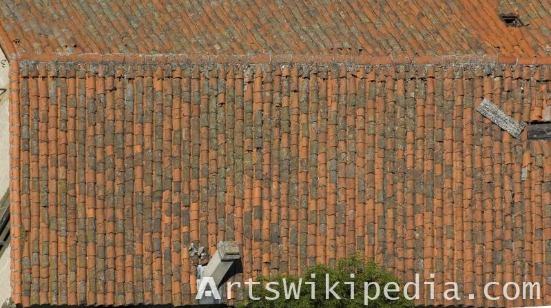 roof texture top view
