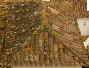 old-house-roof-shingles