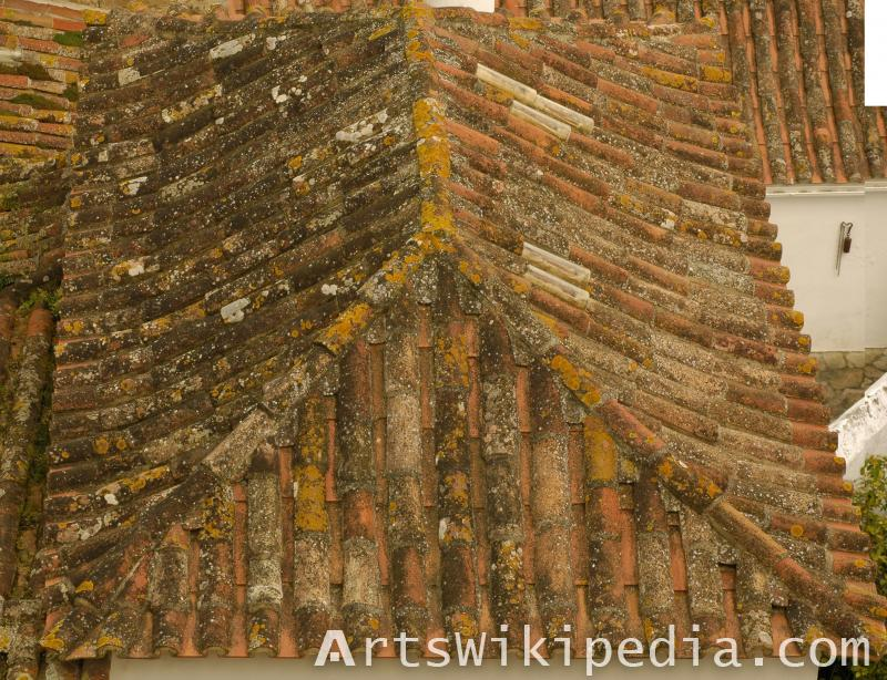 old house roof shingles