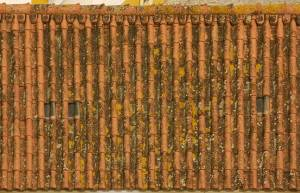 free-old-ceramic-roof-texture