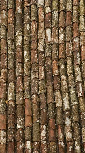 dirty-roofing-image