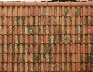 old red roof ceramic shingles