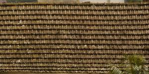 rotten-roof-texture