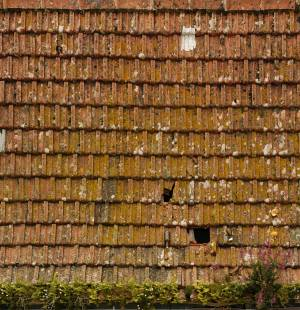 free-old-roof-ceramic-shingles