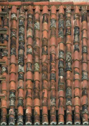 high-resolution-house-roof-texture