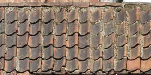 high-resolution-dirty-roof-shingles