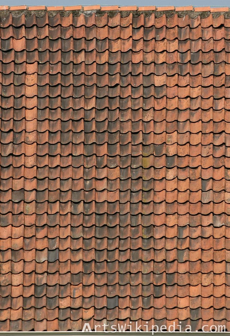 High resolution roof texture